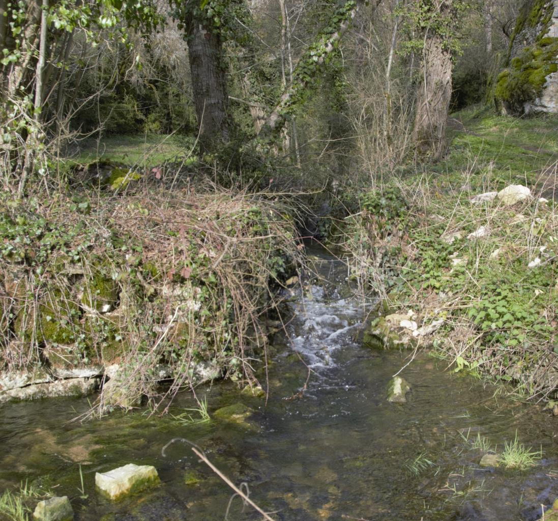 Sortie du ruisseau
