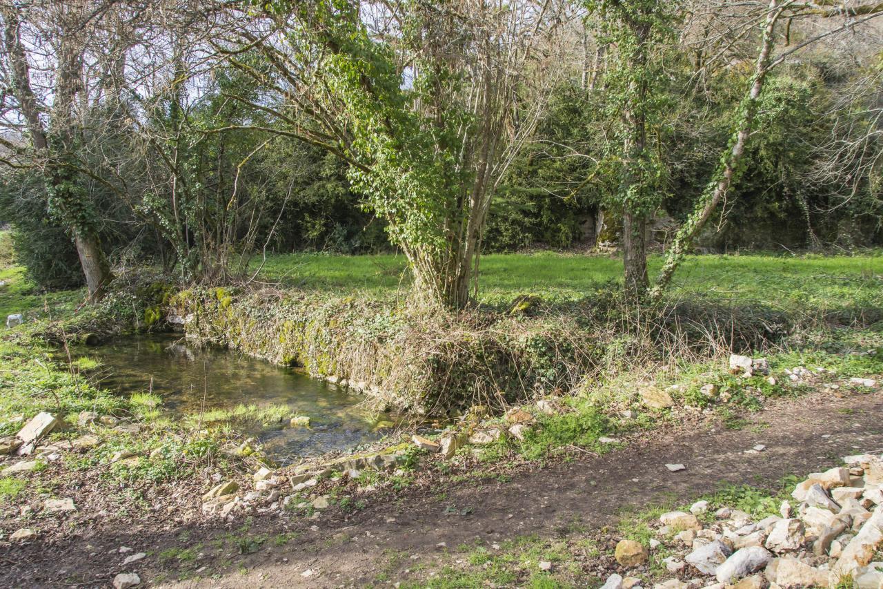 Bassin après la source