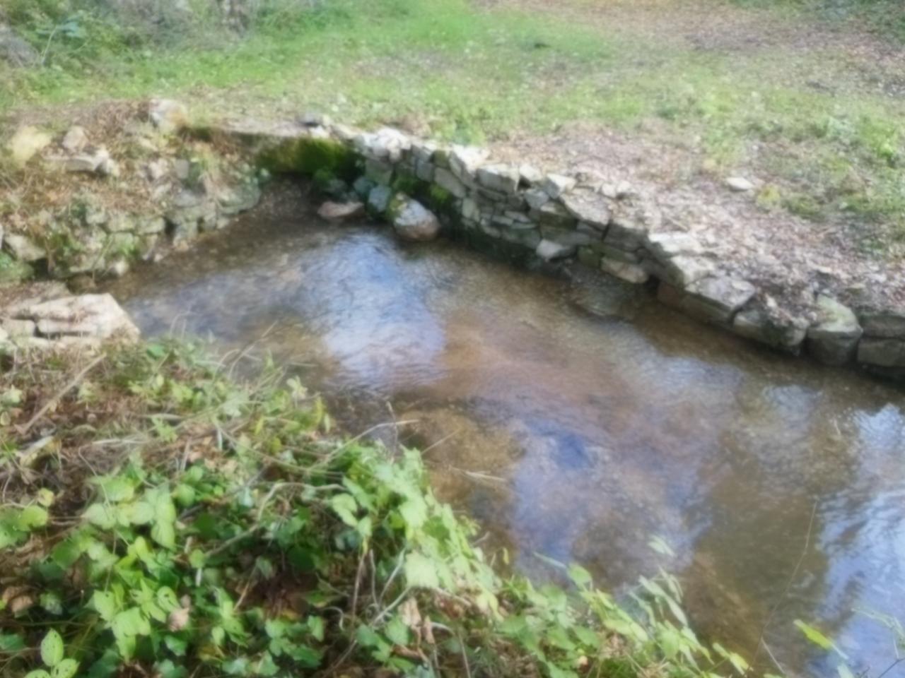 Bassin depuis l'ancien potager