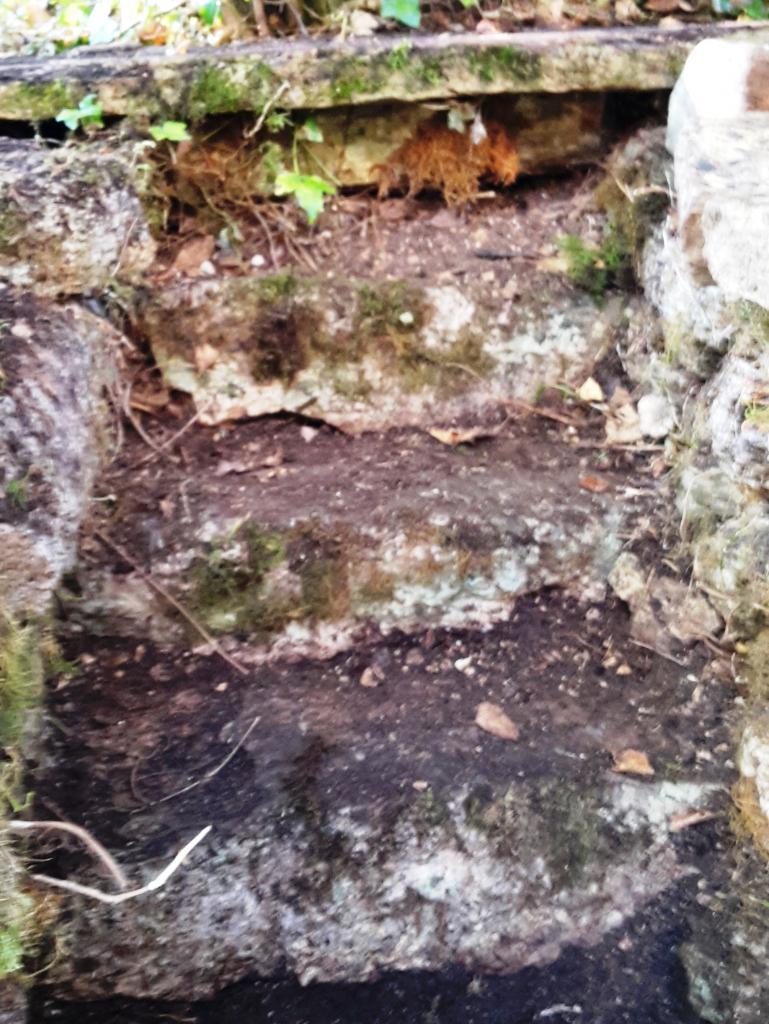Découverte de l'escalier allant à l'ancien potager